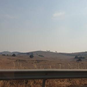 サマーホリデーの始まりは煙るシドニーからビクトリア州へ