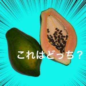 ポーポー (Papaw) はパパイヤ (Papaya) じゃない⁉︎それはオーストラリアとニュージーランドだけらしい