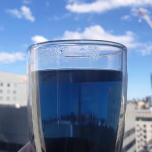 びっくりするほど真っ青な『バタフライピー』というお茶知ってますか⁉︎