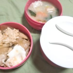 女子中学生弁当、親子丼