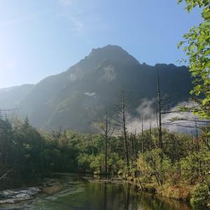 森の中へ(@岳沢)