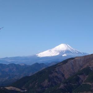富士山-----。(@大山)