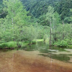 美しい池(@7月2日)