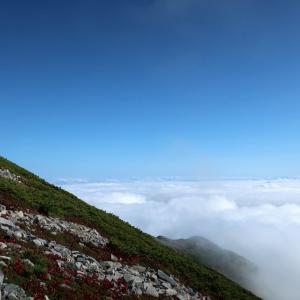 雲の上へ(@爺ヶ岳)