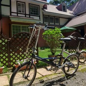 オーナー、自転車をもらうの巻 partⅡ