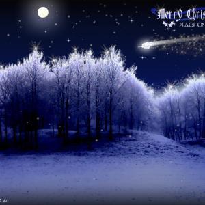 """素敵~""""Queenからのクリスマス…"""""""
