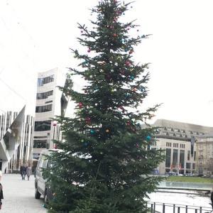 ドイツのクリスマスソング〜O Tannenbaum(もみの木)