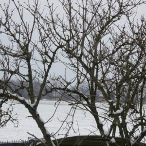 【ドイツ語】Es schneit(雪が降ります) 〜 非人称動詞