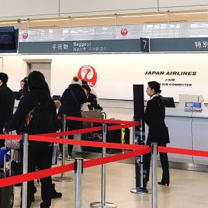 Upグレードできます片道¥8500の航空券