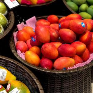 日本の果物のような台湾産果物
