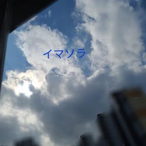 台風接近中 ☔➰오늘 날씨