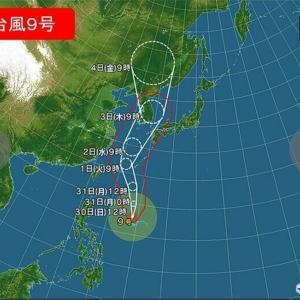 台風 韓半島接近中(9号メイサーク)