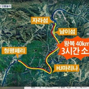 韓国で一番気運が良い場所はココだ【孝情の木が出現】