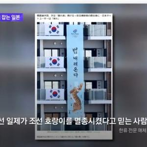 韓国の虎の意味とオリンピック開幕