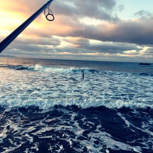 1月26日釣行  板マスを求めて…5戦目!