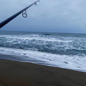 2月22日釣行  お鱒の探索 2戦目!