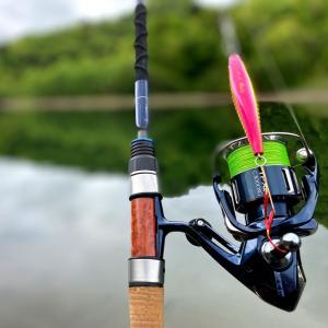 5月30日釣行  予行演習のつもりが…(ノω`)
