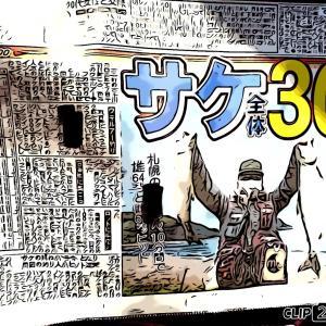 10月14日釣行  サケ11戦目!最後かな?