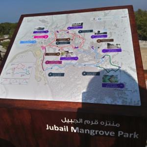 マングローブの公園へ。