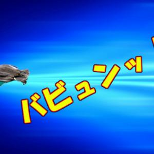 コガモってペレットが到達するより早く飛んでるんじゃないの?
