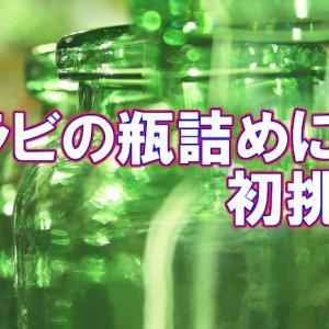 柔らかワラビの瓶詰めはちゃんと長期保存できているでしょうか?