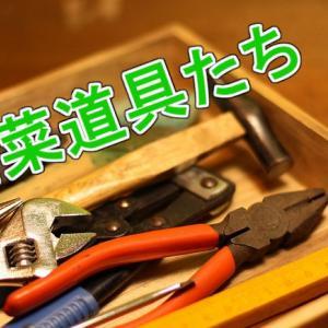 初心者山菜ハンター2年生が使っている山菜採りの道具・装備まとめ