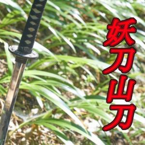 山菜採りナイフ 山刀S(仁作)を購入 狩猟や海でも使えるかも