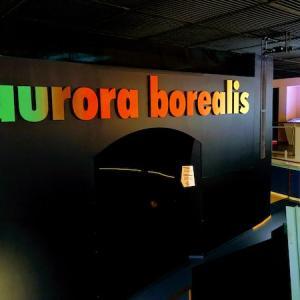 08.科学博物館でオーロラを学ぶ!フィンランド人の〝シス〟って?:Rovaniemiその2