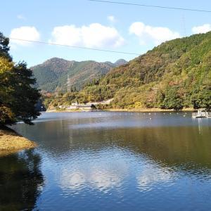 野村ダム~ほわいとファーム前へ