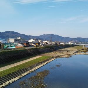 冬晴れの愛南町御荘平城の国道沿い