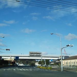寄松の宇和島道路沿い桜並木