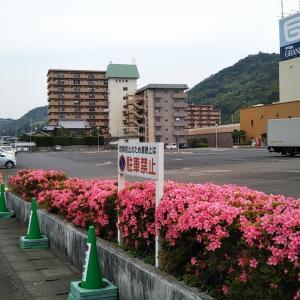5月30日の道連橋~八幡橋