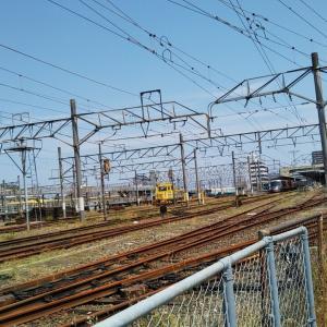 初夏のJR松山駅南側線路沿いをウォーキング