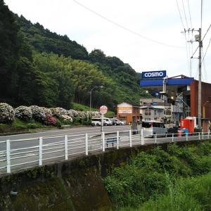八幡浜千丈駅付近の千丈川沿い