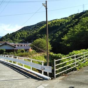 梅雨晴れの立間川遊歩道