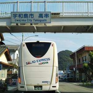 真夏の吉田町西小路と東小路