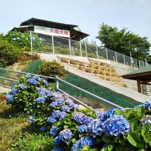 梅雨の晴れ間の九島望橋園