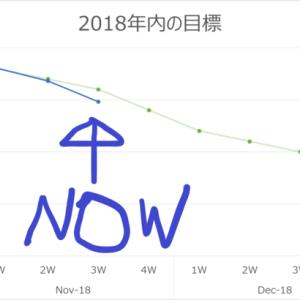 年末の減量目標