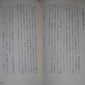 書籍:「22を超えてゆけ・Ⅱ 「6と7の架け橋」」