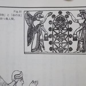 書籍紹介:ハーモノグラフ、錬金術図(極座標グラフ)