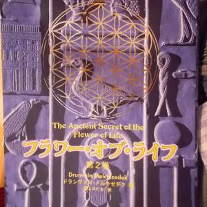 書籍紹介:フラワー・オブ・ライフ 1巻(P50-51、P65-69)