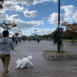 小春日和の浦安公園で😆🎶