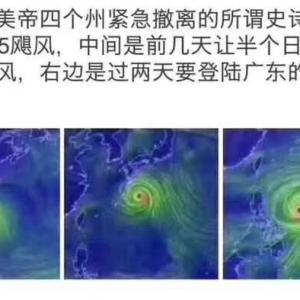 台風のつめあと