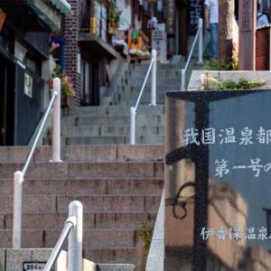 【温泉旅】伊香保温泉に行ってきた。石段と伊香保神社、露天風呂と水沢うどん