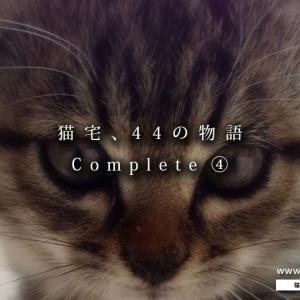 【まとめ】猫宅・44の物語 ④ ~猫たちとの出会いと別れ~