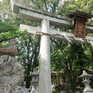 三宅八幡宮と下鴨神社へ