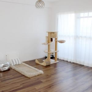 床の拭き掃除ってどれくらいの頻度でやってますか?