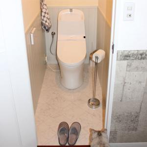 トイレ掃除を簡単に済ませたい!水切れ最高のトイレブラシと手抜きできるクリーナー