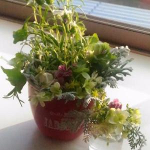 ブリキとお花