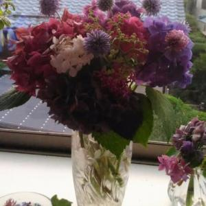 紫陽花の生け花♪